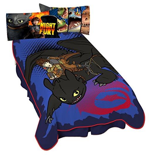DreamWorks Dragon Flight Micro Raschel Blanket